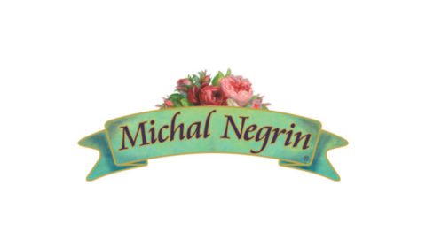 michalnegrin Offers Coupons Promo Codes Discounts & Deals